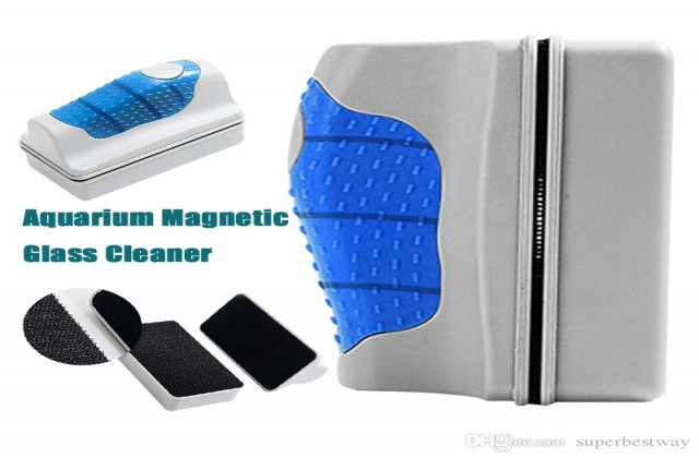 buy Aquarium Cleaning Magnet Ahmedabad Gujarat India