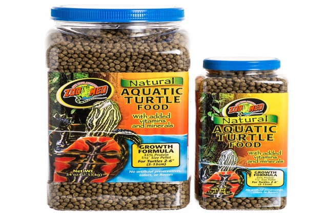 buy Turtle Food Ahmedabad Gujarat India
